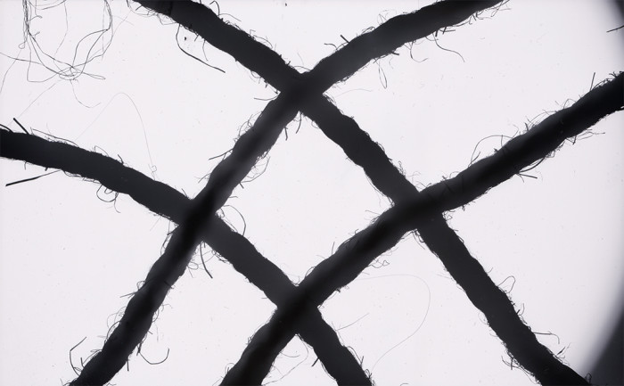 rope-photogram-1