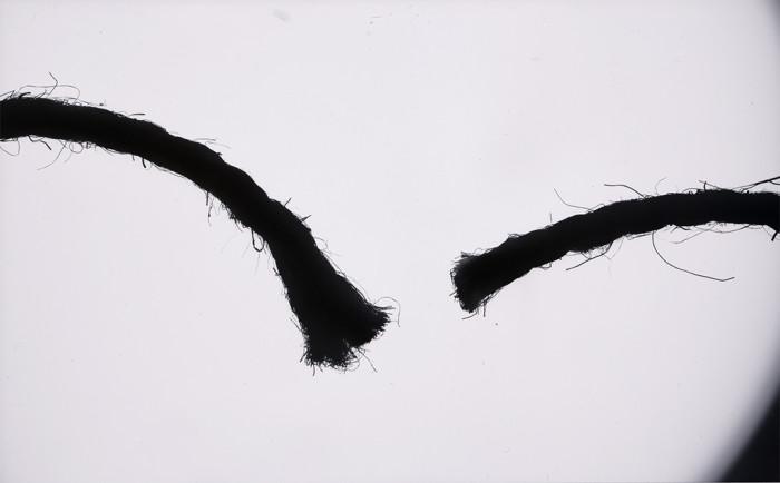 rope-photogram-2