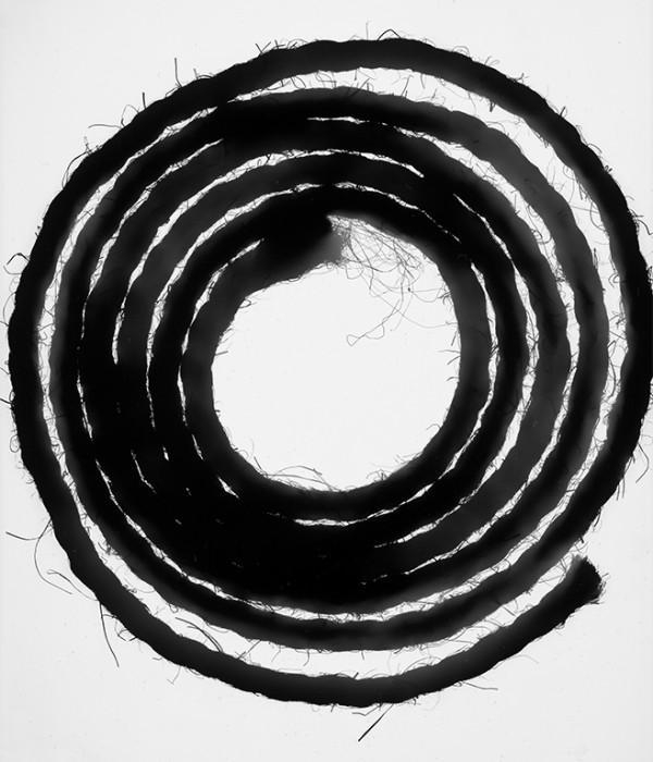 rope-photogram-4